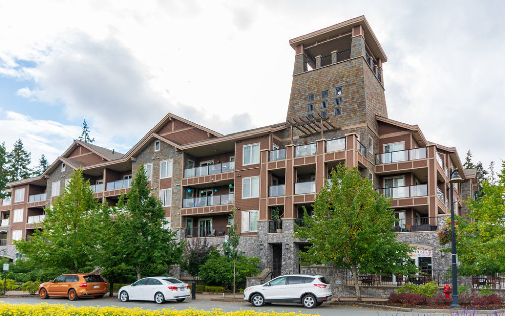 Luxury Living at Bear Mountain Condo